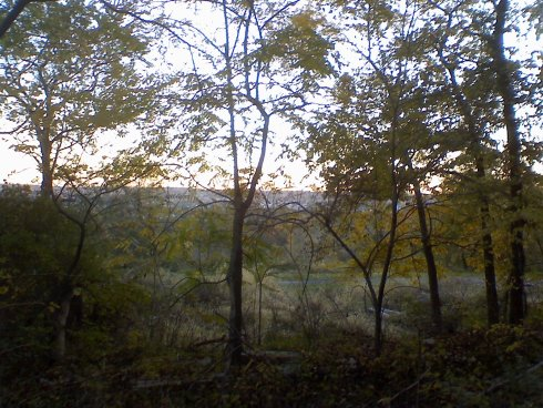 View of the South Hills from Frick Park in Pittsburgh during theautumn