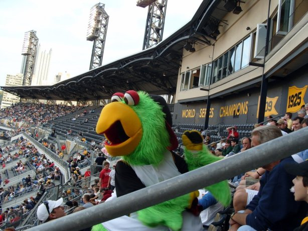 Pittsburgh Pirates parrot mascot